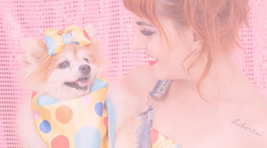 moda | editorial de moda | editorial de carnaval | moda pet | pet influencer | digital influencer | tks dog | looks para pets | carnaval 2020 | look pet de carnaval | carnaval de rua sp 2020
